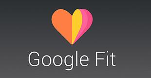 Logo Google Fit